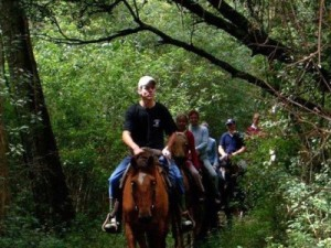 Southern Comfort Horse Riding